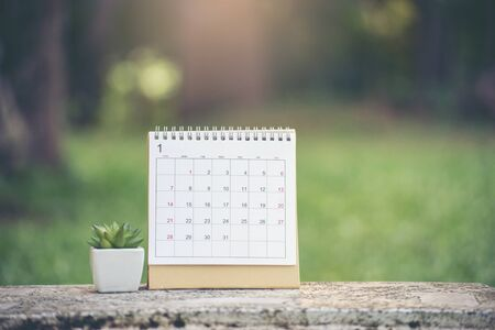 Desktop Calendar 2019 and cactus place on office desk.Calender for Planner to make timetable,agenda appointment,organization,management each date,month and year on table.Calendar with green Background Concept.