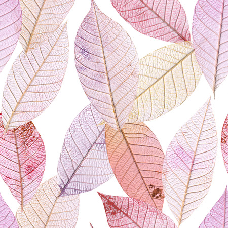 tinted: A seamless background pattern of purple tinted skeleton leaves on white background