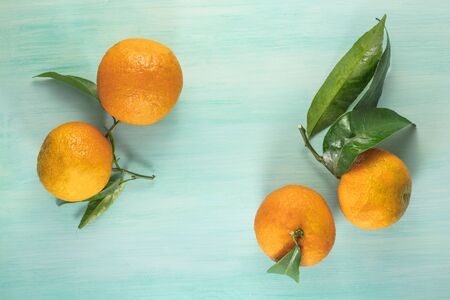 A photo of vibrant orange tangerines with green leaves, shot from above on a light background texture with copyspace Stock Photo