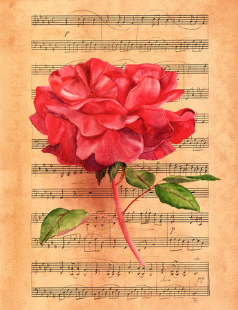 red rose: Watercolor red rose on toned sheet music Stock Photo