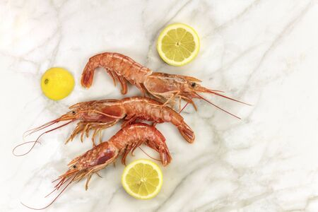 lemon wedge: Raw shrimps with slices of lemon, shot from above on a white marble table with a place for text