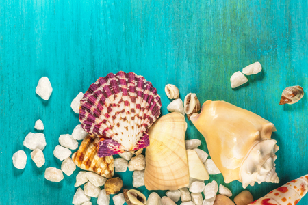 Starfish, shells, and pebbles on vibrant turquoise background