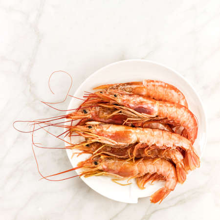 Raw shrimps on plate with copyspace