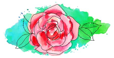 rose: Vector and watercolor pink rose on turquoise brush stroke