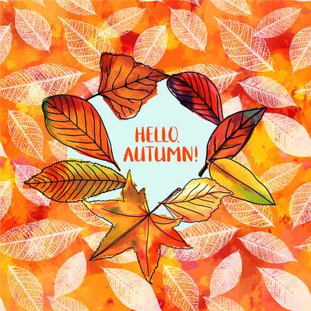 fall leaves: Hello, Autumn vector design with vibrant fall leaves. Illustration