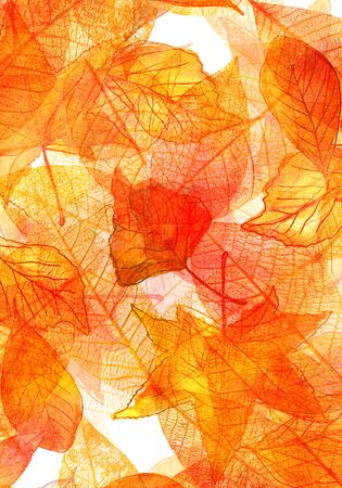 Autumn background with watercolor leaves