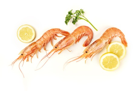 Overhead photo of three raw shrimps on white, with parsley and lemon slices, with copy space