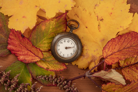 A vintage watch with autumn leaves, shot from the top on a dark rustic wooden background Standard-Bild