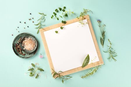 Recipe Design Template. A piece of paper with herbs, salt, and pepper, shot from the top on a teal background with copy space