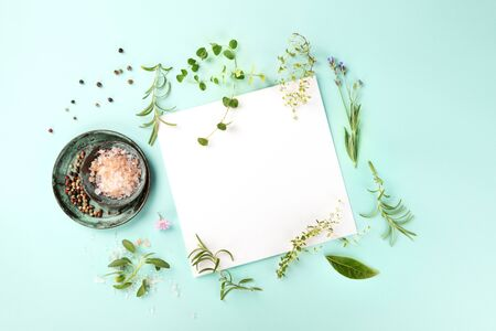 Recipe Design Template. A piece of paper with herbs, salt, and pepper, overhead shot on a teal background with a place for text Stock Photo