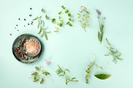 Cooking a Recipe Design Template. Culinary herbs, salt, and pepper, shot fom the top on a teal background with copy space Stock Photo