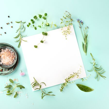Recipe Design Template. A piece of paper with herbs, salt, and pepper, overhead square shot on a teal background with copy space