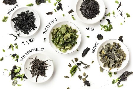 Dry seaweed, sea vegetables, with their names, shot from above on a white background
