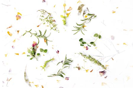 The herbs of Provence. Rosemary, oregano, thyme, and marjoram, overhead shot on a background of dry leaves and petals, forming a frame with a place for text