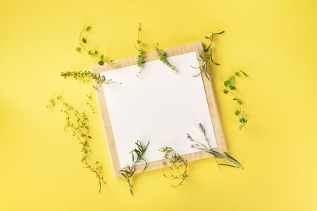 French Food Design Template. A clipboard with the herbs of Provence, shot from above on a yellow background with copy space