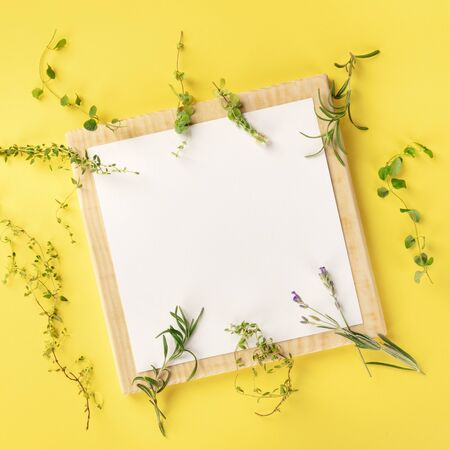 French Food Design Template. A clipboard with the herbs of Provence on a yellow background with a place for text, square overhead shot Zdjęcie Seryjne