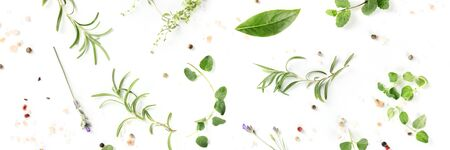 Culinary herbs and spices, shot from above on a white background, cooking pattern, a flat lay panorama