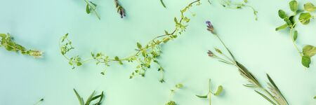 A panorama of the herbs of Provence. Thyme, oregano, lavender, shot from the top on a blue background in a flat lay pattern, toned image Stock fotó