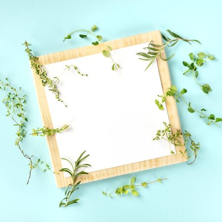 The herbs of Provence, a square French food design template