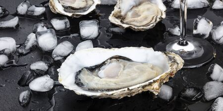 Fresh raw oyster, a panoramic close-up shot on ice on a black background Reklamní fotografie