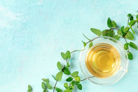 Mint tea cup, shot from the top on a blue background with fresh mint leaves and copy space