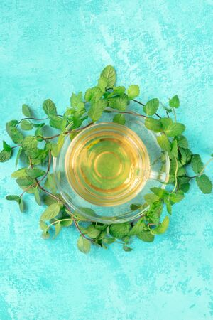 Mint tea cup, shot from the top on a turquoise background with fresh mint leaves and a place for text Reklamní fotografie