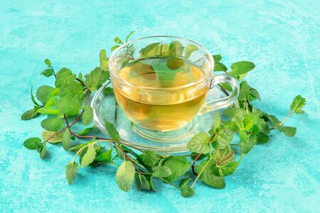 Mint tea cup on a turquoise background with fresh mint leaves