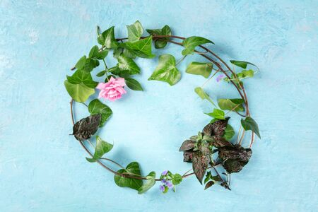 Invitation or greeting card design template with a flat lay wreath of leaves and flowers, overhead shot on a blue background with a place for text. Ivy and rose frame 写真素材