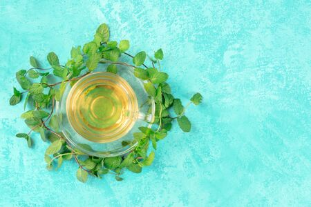 Mint tea cup, overhead shot on a turquoise background with fresh mint leaves and copy space