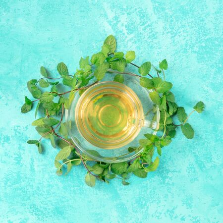 Mint tea cup, square top shot on a blue background with fresh mint leaves