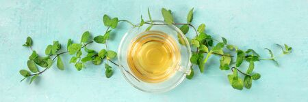 Mint tea cup, panoramic top shot on a blue background with vibrant fresh mint leaves forming a vignette