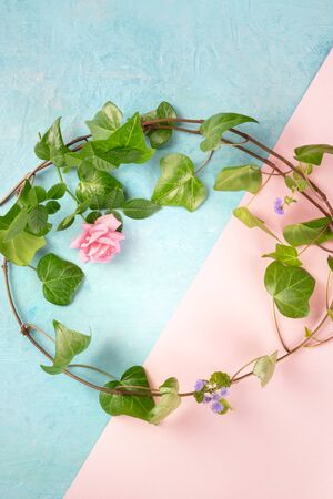 Invitation or greeting card design template with a flatlay wreath of leaves and flowers, overhead shot on a blue and pink background with a place for text. Ivy and rose frame Stok Fotoğraf
