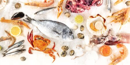 Fish and seafood panorama, an overhead flat lay shot of various fresh products. Sea bream, crab, sardines, scallops, shrimps et al