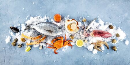 Fish and seafood panorama, a flat lay. Sea bream, scallop, crab, squid, clams, shot from the top on ice