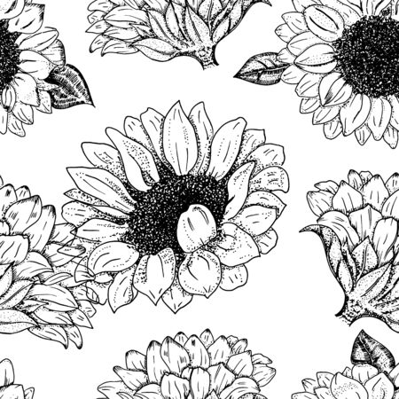 Vector sunflowers seamless pattern, hand drawn realistic flowers, suitable for hot foil stamping design 向量圖像