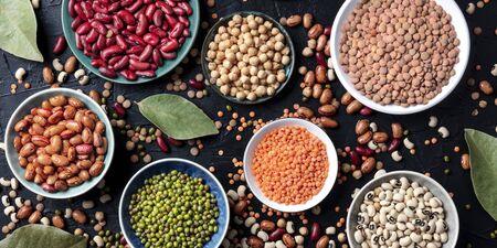 Legumes assortment panorama, overhead shot on a dark background. Lentils, soybeans, chickpeas, red kidney beans, a vatiety of pulses Standard-Bild