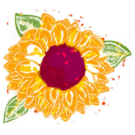 Sunflower, vector watercolor, a design element for greeting cards or invitations 向量圖像