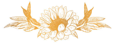 Vector floral ornament, a vignette of a sunflower and some branches, a design element for hot stamping 向量圖像