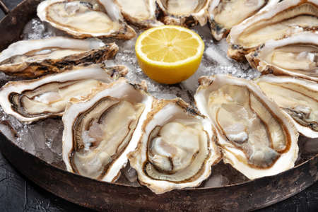 Oysters close-up. A dozen of raw oysters on a platter