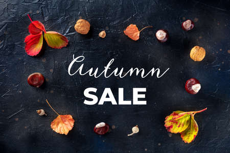 Autumn Sale banner with fall leaves and chestnuts, overhead flat lay shot on a black background