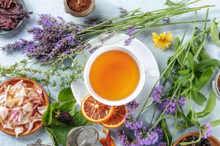 Tea. Herbs, flowers and fruit around a cup of tea, an overhead flat lay shot. Healthy organic hot drink