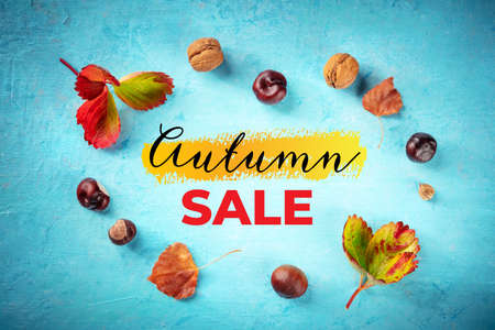 Autumn Sale banner with fall leaves and chestnuts, overhead flat lay shot on a blue background