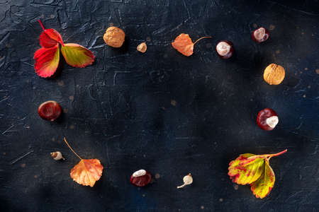Autumn background with vibrant leaves and chestnuts, overhead flat lay shot on black with a place for text, a design template for a banner or invitation
