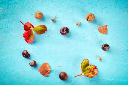 Autumn background with vibrant leaves and chestnuts in the shape of a heart, overhead flat lay shot on blue with a place for text, a design template for a banner or invitation