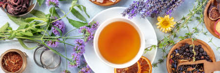Tea panorama with herbs, flowers and fruit, an overhead flat lay shot. Healthy hot drink panoramic banner with lavender 版權商用圖片