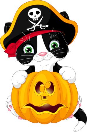 cocked hat: Pirate Kitten Illustration