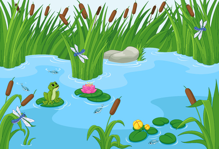 Illustration of a pond with a frog Illustration