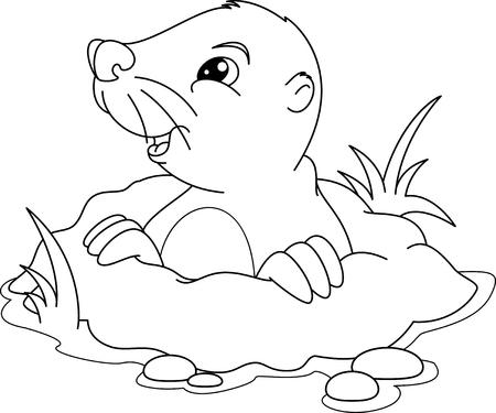Griffin Página Para Colorear Ilustraciones Vectoriales, Clip Art ...