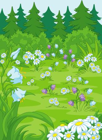 campanula: forest glade