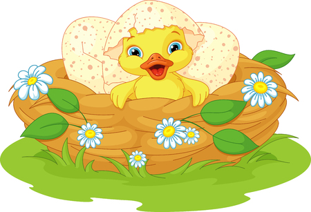 Cute duckling hatched in the nest Illustration
